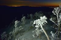 霧氷の夜明け桧塚奥峰 - 峰さんの山あるき
