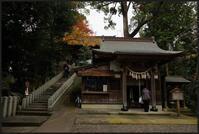 大鷲神社-5 - Camellia-shige Gallery 2