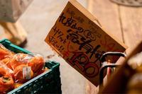 富有柿 - ホンテ島 日記