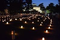 なら燈花会(奈良国立博物館前エリア) - ブルーアワーの街の情景