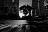 新宿スナップ / X30 - minamiazabu de 散歩 with FUJIFILM