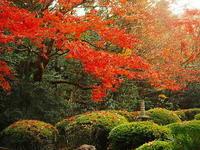 詩仙堂淡い秋日向Ⅱ - 風の香に誘われて 風景のふぉと缶