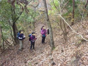 12/10 (月)八重山: 年末恒例低山歩き - ぽつぽつ山レポ、ときどき休み、ところにより道草