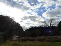 空気の澄んだ素晴らしい朝 - 千葉県いすみ環境と文化のさとセンター