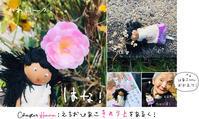 旅行代行旅行組合 [act.112]:「エチオピア子」と紅葉の京都さんぽ✳︎花の章+おまけの「とよ子」! - maki+saegusa