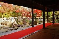 太山寺安養院庭園 - たんぶーらんの戯言