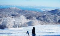 スキー日和! - こもれびの森