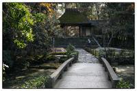 散歩東山-43 - Hare's Photolog