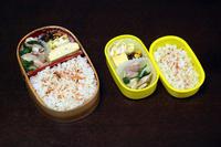 かぶと鶏肉の炒め物 - 庶民のショボい弁当