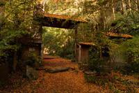 日いづる山寺 - katsuのヘタッピ風景