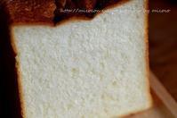 セントル角食 - 森の中でパンを楽しむ