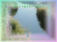 フォト575交心zrk1402『友亡くて映るは一人冬の川』 - 老仁のハッピーライフ