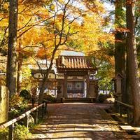 2018年箱根長安寺の紅葉 - エーデルワイスPhoto