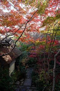 2018京都の紅葉・嵯峨野厭離庵 - デジタルな鍛冶屋の写真歩記