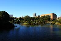 初冬の清澄庭園 - お散歩写真     O-edo line