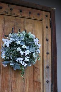 ホワイトクリスマス - CHIROのお庭しごと