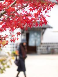 倉敷美観地区12月9日前 - 風まかせ、カメラまかせ