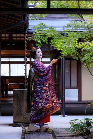 先笄(祇園東・雛佑さん)屋外編 - 花景色-K.W.C. PhotoBlog