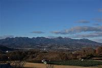 花の丘から⑤ - 光画日記