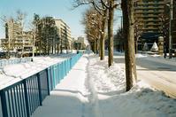 雪の細道と荷を挽く人々 - 照片画廊