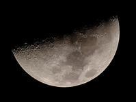 月齢7.8 - ブナの写真日記