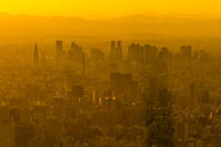 スカイツリーから見た夕暮れの景色 - デジカメ写真集