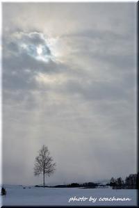 冬景色 - 北海道photo一撮り旅