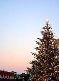 恵比寿ガーデンプレイスのクリスマスイルミネーション - Miwaの優しく楽しく☆