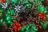 ~1,000mの光の回廊~KOBE LIGHT MESSAGE in2018 - たんぶーらんの戯言