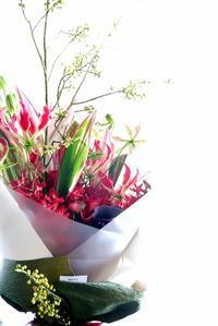 お祝いの花束。「赤基調で」。豊平1条にお届け。2018/12/10。 - 札幌 花屋 meLL flowers