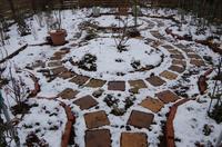 小さなローズガーデンの12か月・・2月 - 季節の風を追いかけて
