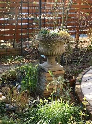 コンテナを春バージョンに♪ 無理をせづに頑張る庭仕事 - miyorinの秘密のお庭