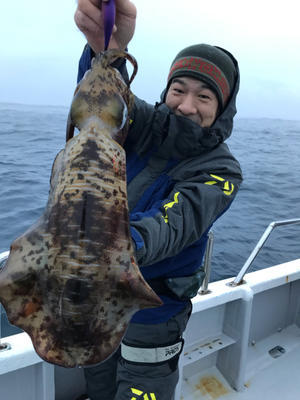 12月17日 ティップ ラン 便。 - 三重県 志摩沖 エギング ティップラン 釣り船 まると屋