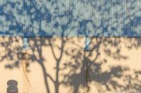 影を拾う - ひつじ雲日記