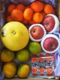 果物好きで嬉しいな!とオールA - ちゃたろうとゆきまま日記