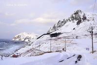 元地の雪景色 - 礼文島★ハナとわたし
