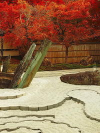 枯山水の庭に秋の紅葉 - 風の香に誘われて 風景のふぉと缶