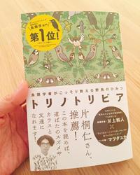 遊び心☆ - 島美砂☆日記帳