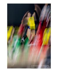 彩 - ♉ mototaurus photography