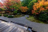 京の紅葉2018御座所庭園の朝(泉涌寺) - 花景色-K.W.C. PhotoBlog