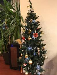 マンションにちょうどよい◎ニトリの150cmクリスマスツリー - 40歳からはじめる「暮らしの美活」