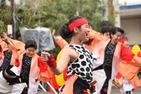 湘南ひらつかスターライトフェスティバル2018【5】 - 写真の記憶