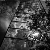 秋空と一体化するシネマコンプレックス - Silver Oblivion