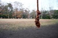 公園のロープ - alors  photos ライカと50mmで