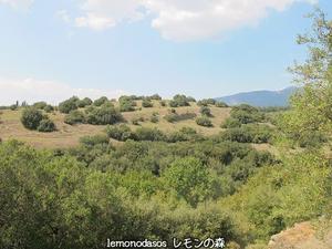 古代ティトロニオの遺跡 - 日刊ギリシャ檸檬の森 古代都市を行くタイムトラベラー