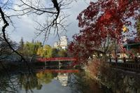 私の晩秋≪お城周りの紅葉≫ - そよ風のつぶやき