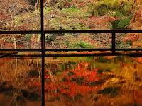 瑠璃光院秋のリフレクション - 風の香に誘われて 風景のふぉと缶