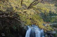 明日香村飛鳥川 - ぶらり記録:2 奈良・大阪・・・