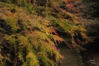 明日香村なが~い名前の神社 - ぶらり記録:2 奈良・大阪・・・