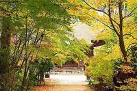 湖南三山長寿寺の紅葉 2 - 光 塗人 の デジタル フォト グラフィック アート (DIGITAL PHOTOGRAPHIC ARTWORKS)